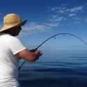 Rod Bending Catch